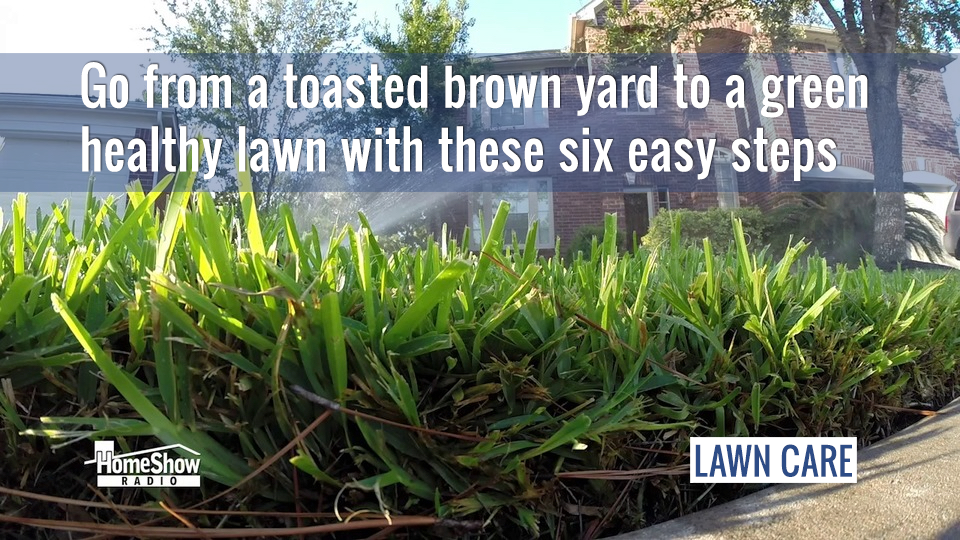 Go from a toasted brown yard to a green healthy lawn with these six easy steps