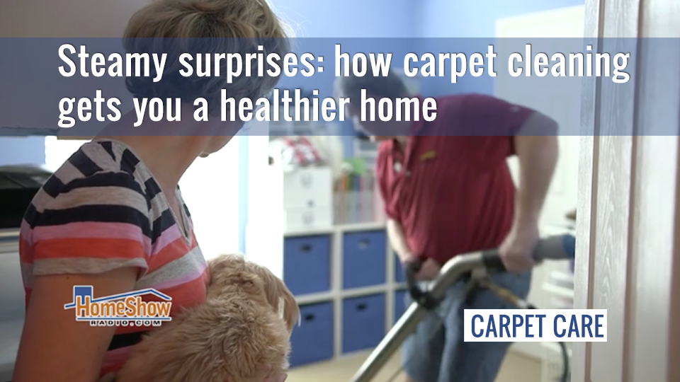 Steamy surprises: how carpet cleaning gets you a healthier home