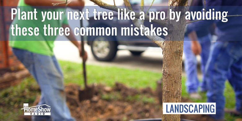 Tree planting like a pro means avoiding these common mistakes