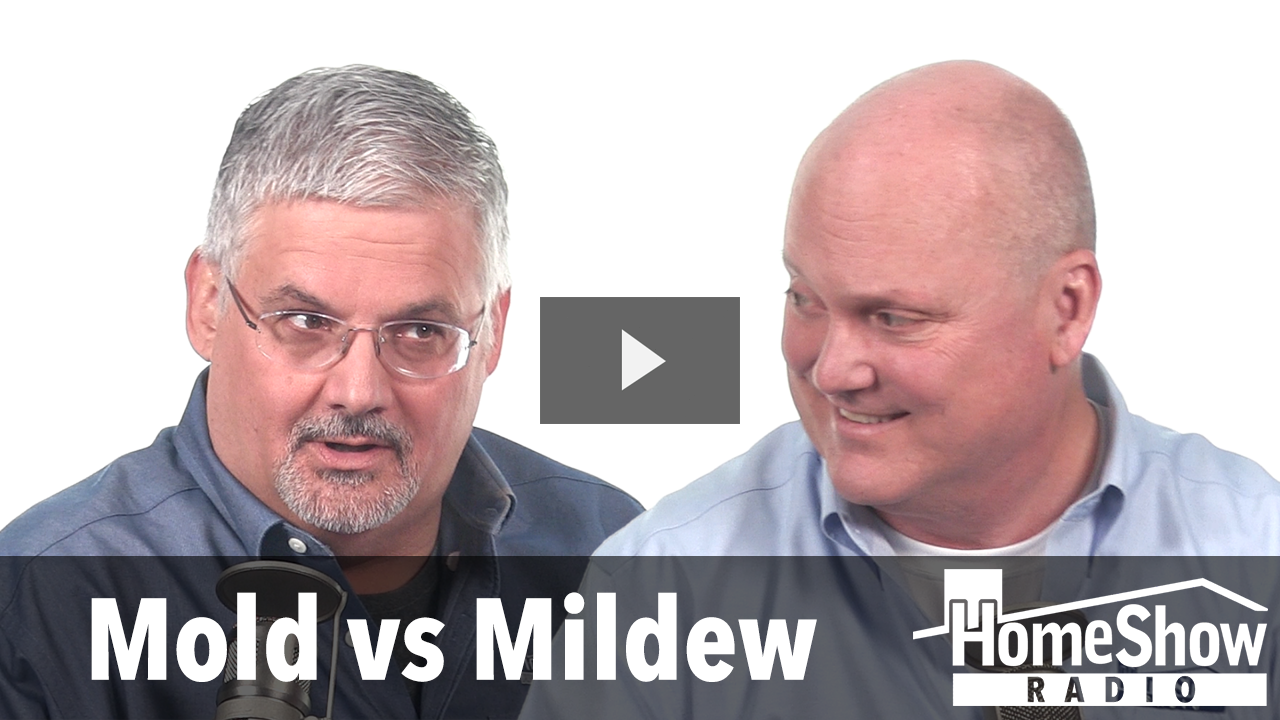 Mold Or Mildew How Can We Tell The Difference Video