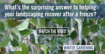 Landscape Freeze Recovery