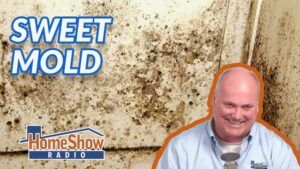 Could too-tight construction cause mold growth?